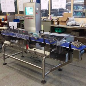 DS300S High Speed Checkweigher